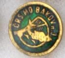 ČRS MO Bakov n. Jizerou  zelený