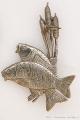 Rybářský odznak Kapři