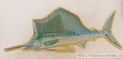 Rybářský odznak Plachetník