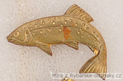Rybářský odznak Lipan levý