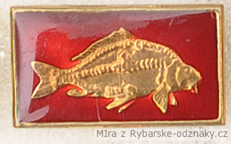 Rybářský odznak Kapr
