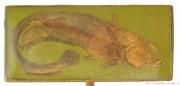 Rybářský odznak Sumec