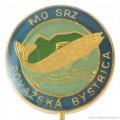 Rybářský odznak MO SRZ Považská Bystrica