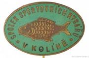 Rybářský odznak Spolek sportovních rybář