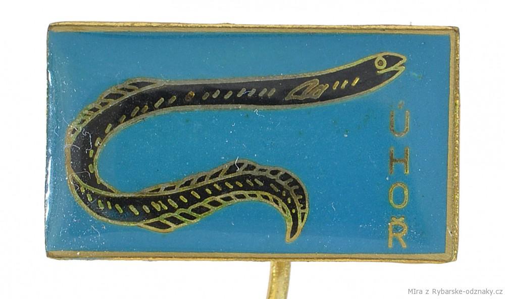 Rybářský odznak Úhoř