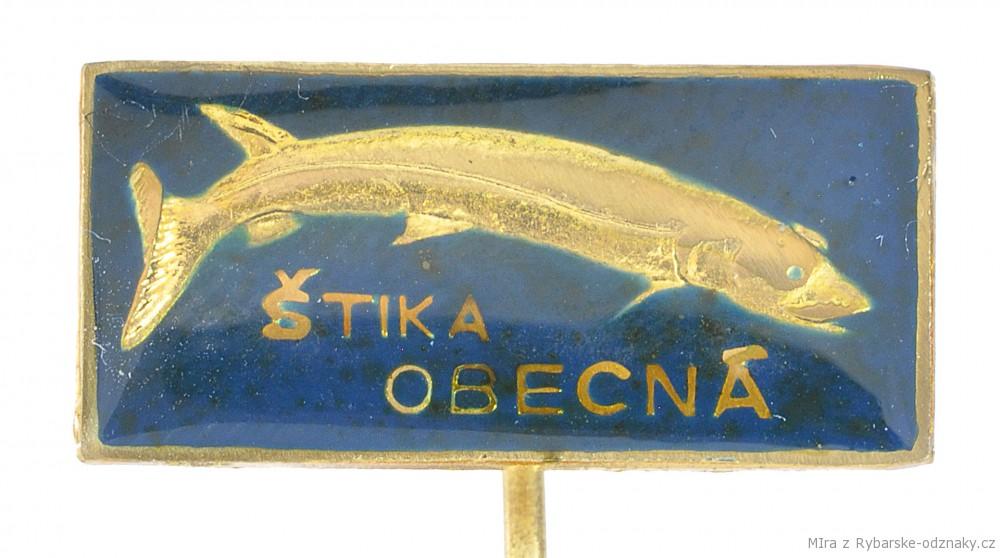 Rybářský odznak Štika