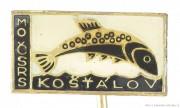Rybářský odznak MO ČSRS Košťálov