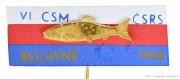 Rybářský odznak VI CSM ČSRS Bechyně